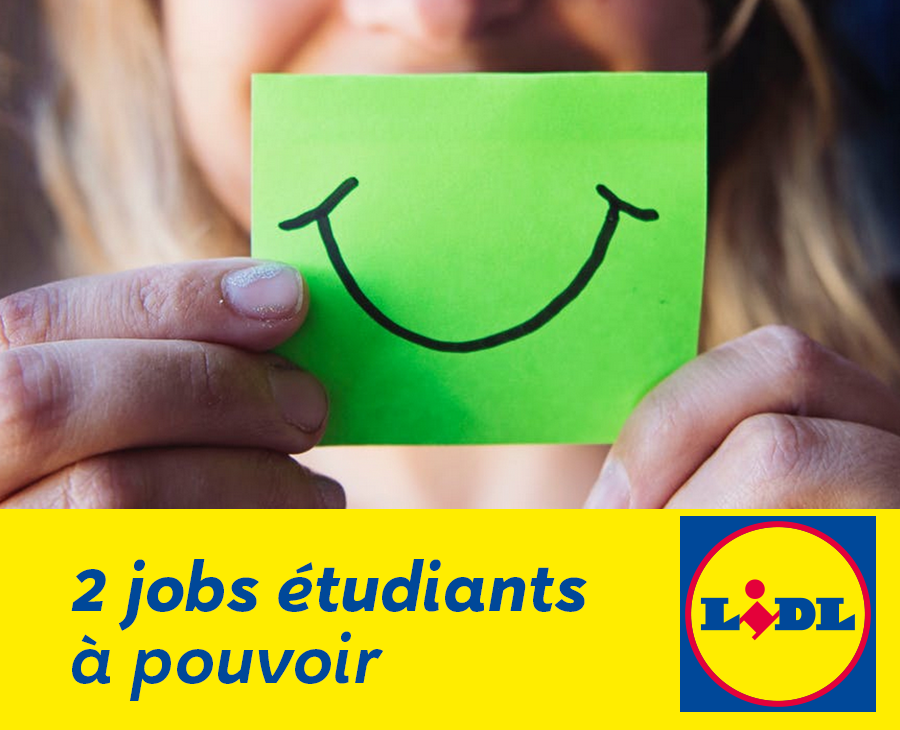 job   lidl savenay recrute